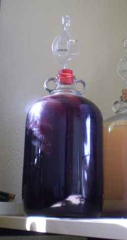 Blackberry pineapple wine