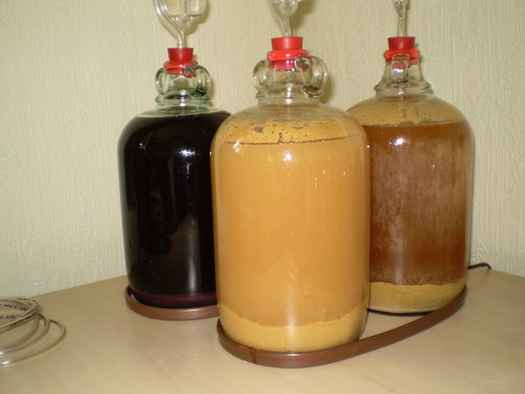Cider fermenting in the demijohns